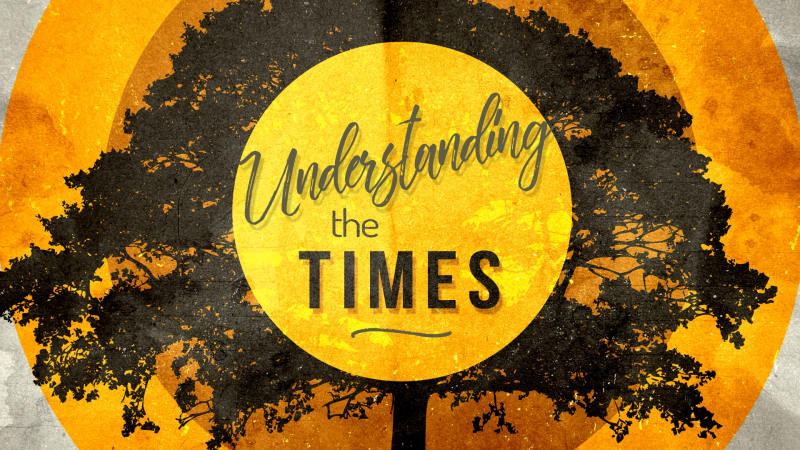 Understanding the Times Series